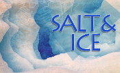 SALT and ICE Workshop, Sat Feb 25, 2017  NYC
